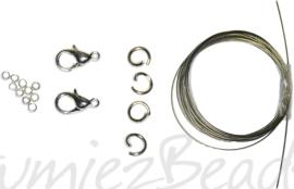 03815 Starterspakket zilverkleurig