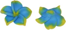 01201 Fimokraal Bloem Geel-blauw 17mmx7mm; gat 1mm 6 stuks