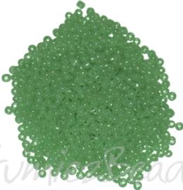 04379 Rocailles Mint 11/0 20 gram