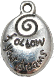 00162 Bedel follow your dreams Antiek zilver