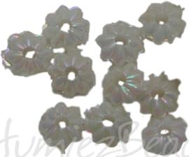00660 Acryl bloemkraaltje Parelmoer 3mmx6mm 5gram (±100 stuks)