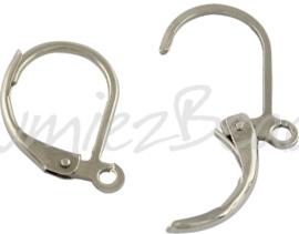 02194 Oorbelhaak gesloten Stainless steel Metaalkleurig 15mmx10mmx1,5mm; gat 1,5mm 2 paar