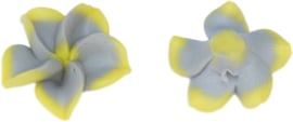 00314 Fimokraal Bloem Geel-grijs 17mmx7mm; gat 1mm 6 stuks