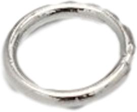 02136 Ringetjes Gesloten Metaalkleurig (Nikkelvrij) 6mmx0,8mm; gat 4,4mm 9 stuks