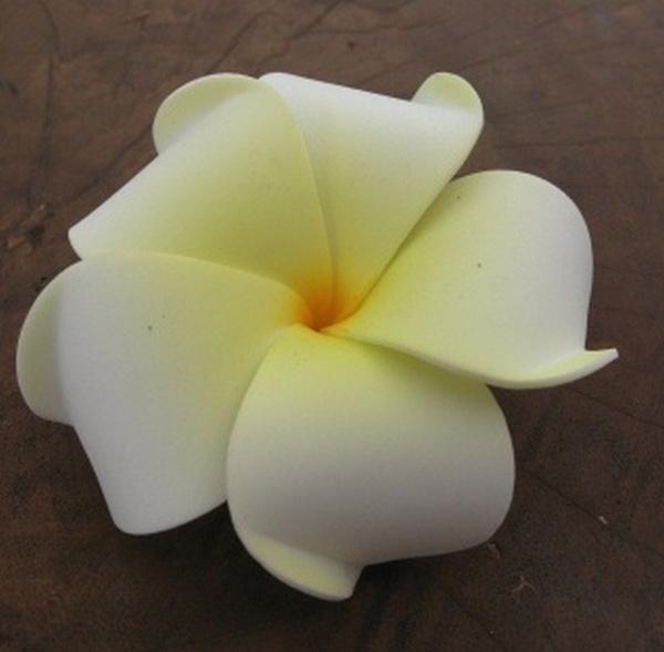 Bloemen Liliwadi White-Yellow