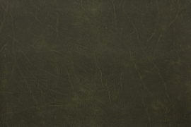 Vyva Fabrics - Oxford - 2410 Army Green