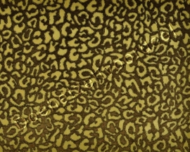 Kobe - Leoparda  - 2 Beige Bruin