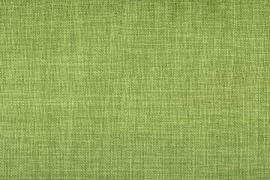 Vyva Fabrics - Agua - Linetta Lime