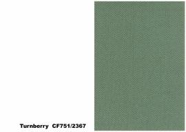 Bute Fabrics - Turnberry CF751 - 2367