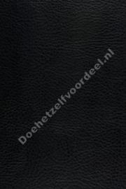 Aristide - Cabro Black 06