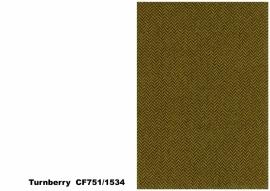 Bute Fabrics - Turnberry CF751 - 1534