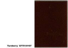Bute Fabrics - Turnberry CF751 - 0107