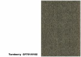 Bute Fabrics - Turnberry CF751 - 0102