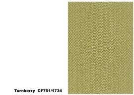 Bute Fabrics - Turnberry CF751 - 1734