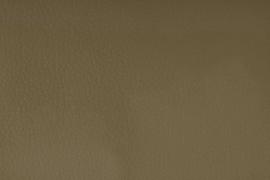 Vyva Fabrics - Cabana - 6710 Lion