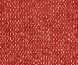 Aristide - William - 380 Tangerine