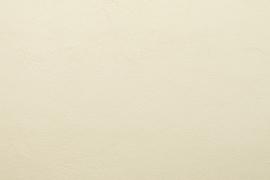 Vyva Fabrics - Bella Nappa - Ivory 5667