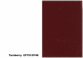 Bute Fabrics - Turnberry CF751 - 0748