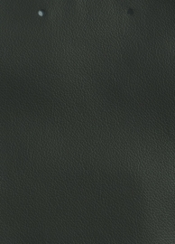Ohmann Leather - Smart - 7203 Verde