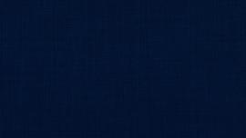 Vyva Fabrics - Agua - Linetta Midnight