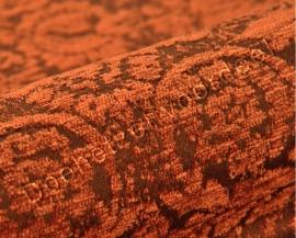 Kobe - Jockey - 12 Oranje