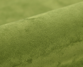 Kobe - Monza CS - 6 groen