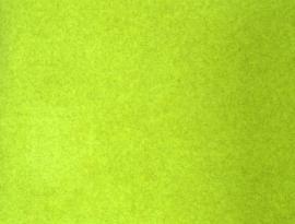 Kong - 14 Lime