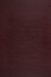 Aristide - Sterling - 06 Burgundy