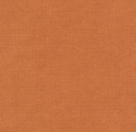 Höpke - Vivace