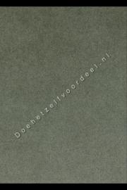 Aristide - Kong - 165 Dune