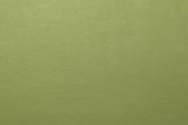Vyva Fabrics - Bella Nappa - Apple 5862