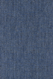 Aristide - Hulk - 651 Jeans