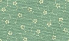 Höpke - Flori - Anemoni 415