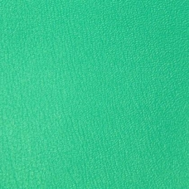 Vyva Fabrics - Boltaflex Colourways - China Green 454319