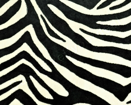 Kobe - Zebra