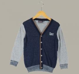 Vinrose vest 'Barry' Grey Melange (grijs/blauw) - maat 86/92 - VR68