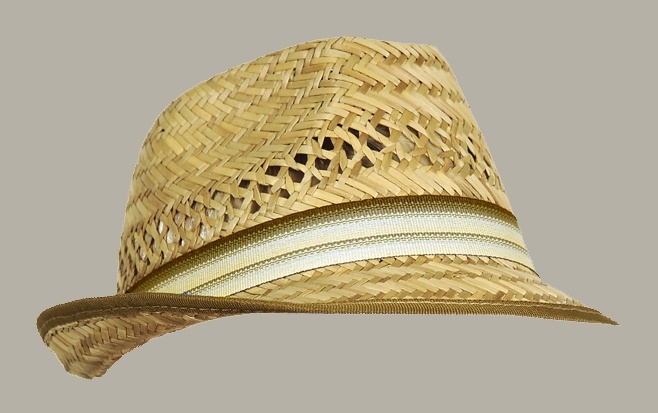 Fedora hoed 'Liam' Natural Straw - bruin/beige - maat 51/53/55 - FI