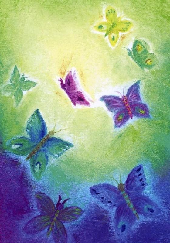 D1010 De vlinders