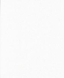 Papier - wit A4 - 220 grams- 10 vellen