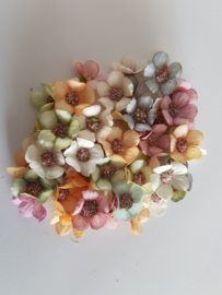 50 bloemetjes in verschillende pastel kleuren