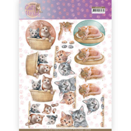 Amy Design- Cats World-3D knivel-kittens-CD11368