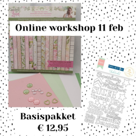 Workshop 11 februari - basispakket