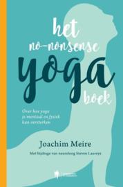 HetHet no-nonsense yogaboek -  Joachim Meire