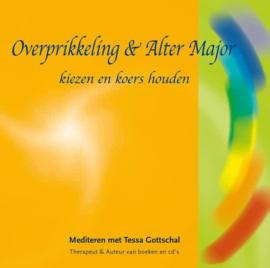 Overprikkeling & Alter Major - kiezen en koers houden - Tessa Gottschal