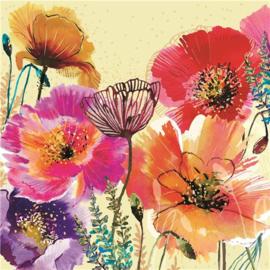 M2064 - Oriental Poppy