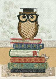 A030 Book Owl - BugArt