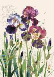 B030 Mixed Irises - BugArt