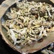 Griekse Salie - 30 gram