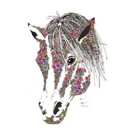 Barley Sugar the Pony