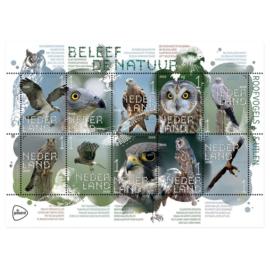 Roofvogels postzegels - 10 stuks